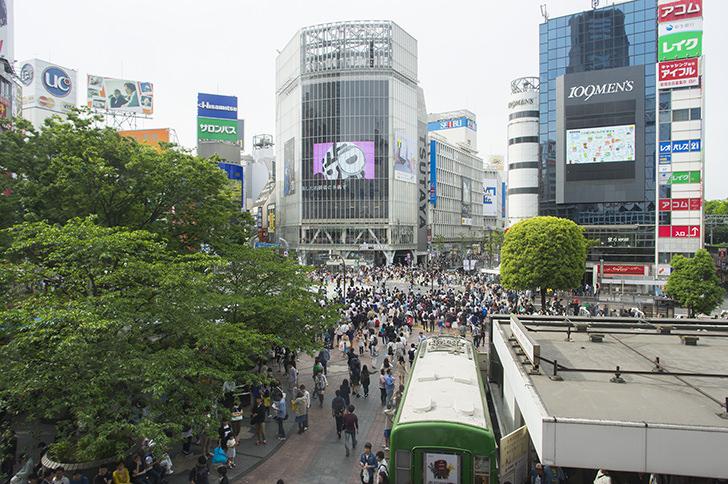 東京リムジン ハイヤーサービス 都内8時間観光コース