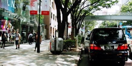 東京リムジン ハイヤーサービス  観光ハイヤー