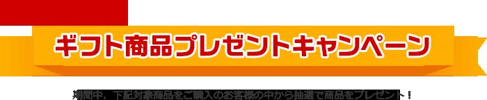 Web限定 ギフト商品プレゼントキャンペーン